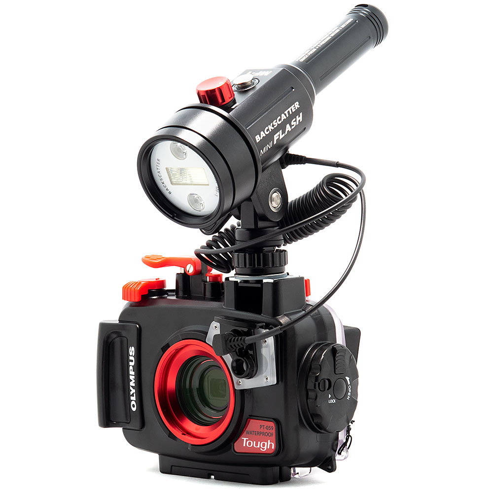 Backscatter Mini Flash MF-1 Underwater Strobe - MF-1 on Olympus TG-6 & PT-059 Underwater Housig