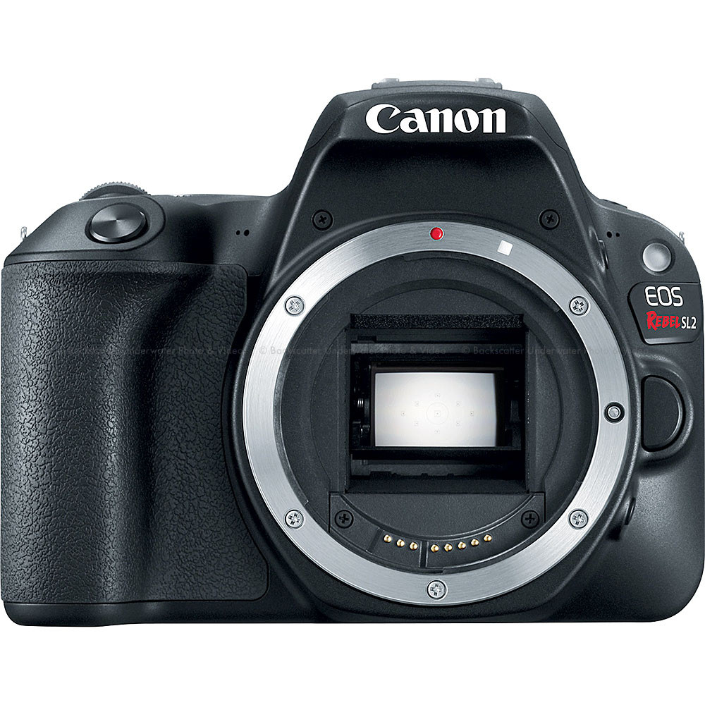 Canon EOS Rebel SL2 200D DSLR Camera Body Only - Black
