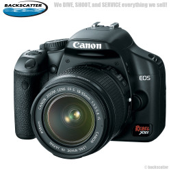 Best SLR Cameras for Underwater Photography