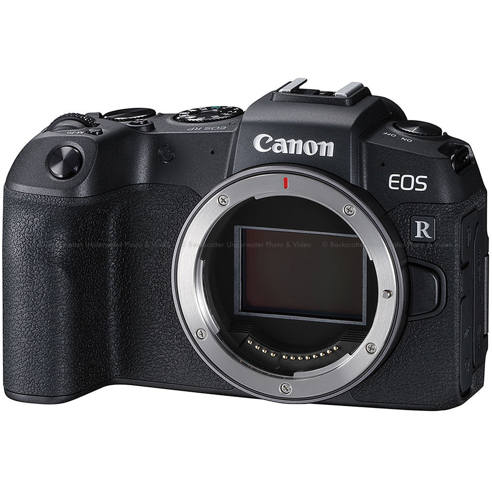 Canon EOS RP Mirrorless Camera