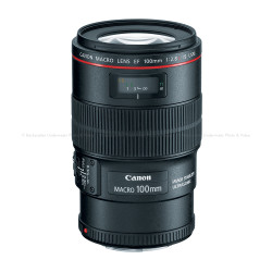 Canon EF 100mm f/2.8L Macro USM IS Lens