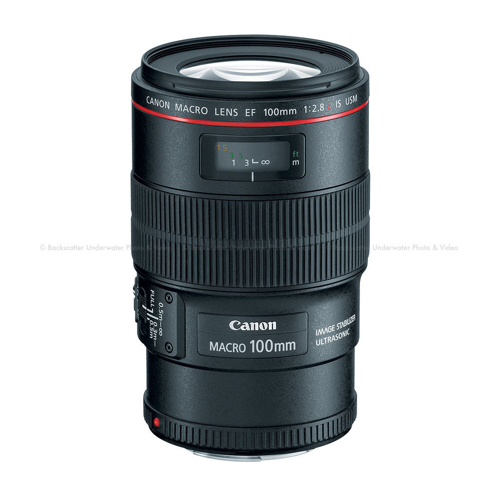 Canon EF 100mm f/2.8L Macro USM IS Lens