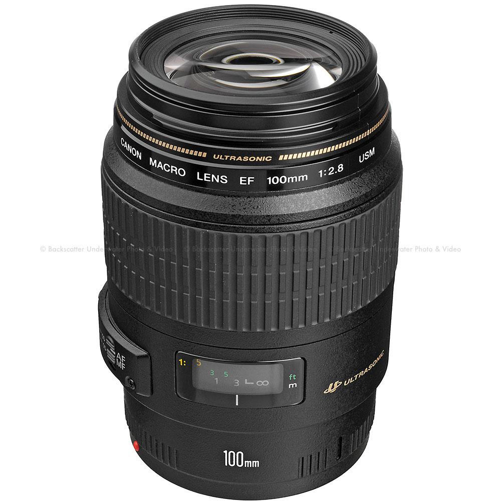 Canon EF 100mm f/2.8 Macro USM Lens  sc 1 st  Backscatter & Canon EOS 5D Mark II Camera Body - Backscatter azcodes.com