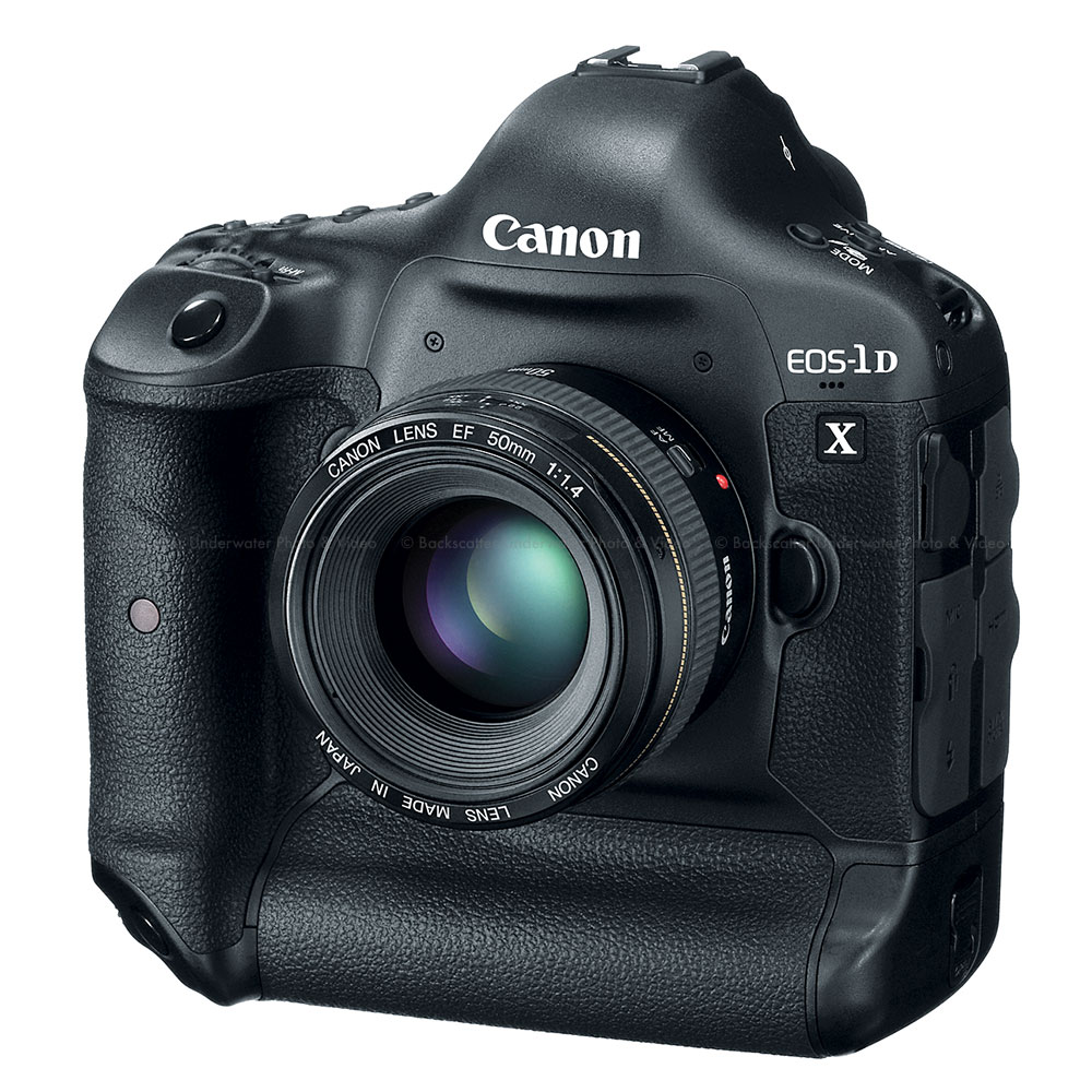 Canon Eos 1dx Dslr Pro Camera Body
