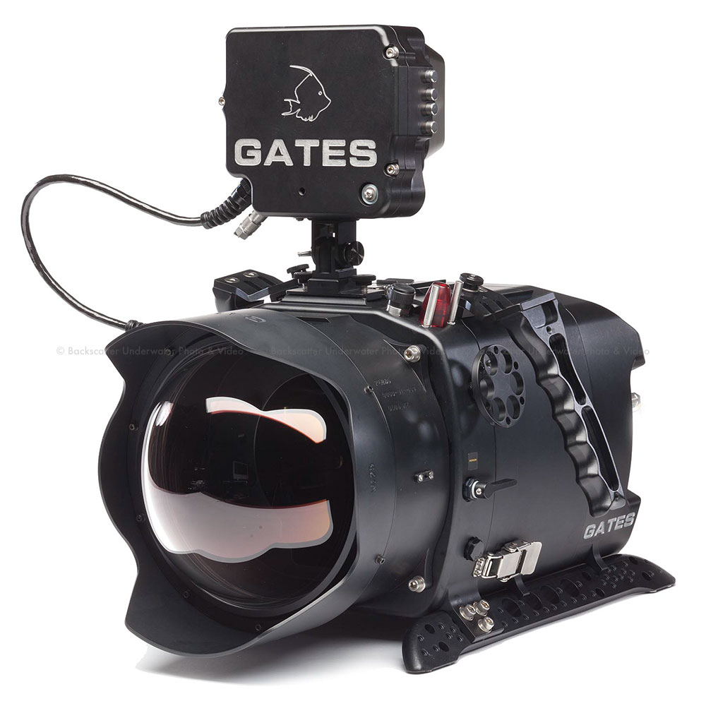 Gates deep weapon underwater housing for red digital for Camera camera