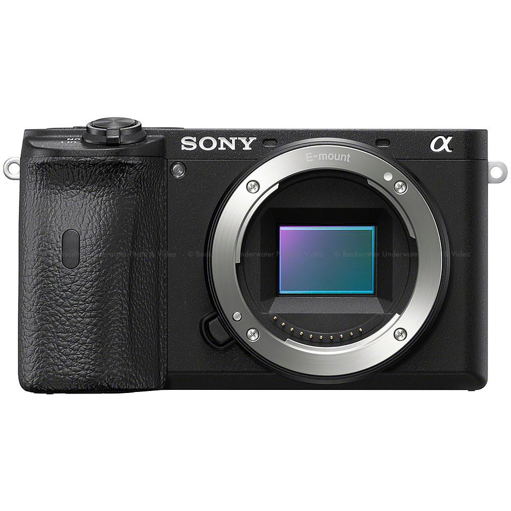 Sony a6600 Mirrorless Camera