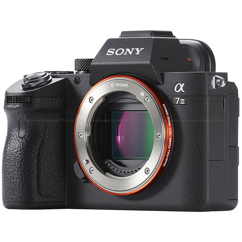 Sony a7 III 35mm Full Frame Mirrorless Camera Body