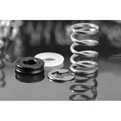 Aquatica Conversion spring kit for 425ft/130 meters rating (contains C-clips, spacers and tips) aq-19217.jpg
