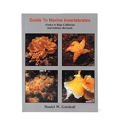 Guide to Marine Invertebrates Book - Gotshall bk-mi.jpg