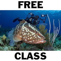 Backscatter Free Class Day at Backscatter in Monterey, California on March 21, 2015 class-free.jpg