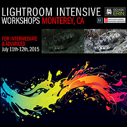 Lightroom Intensive Workshops - For Intermediate & Advanced - July 11-12, 2015 class-gae-mry2.jpg