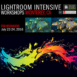 Lightroom Intensive Workshops - For Beginners - July 22-24, 2016 class-gae-mry4.jpg