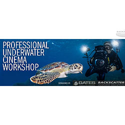 Backscatter & Gates Professional Underwater Cinema Workshop class-gates-pucw.jpg