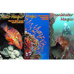 <a href='http://www.backscatter.com/search/index.php?b=Magic%20Filters' class='standard'>Magic Filters</a> for Underwater Photography and Videography