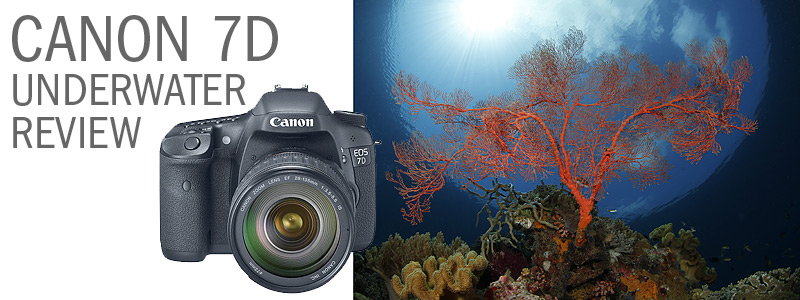 Canon 7D Underwater Housing Review