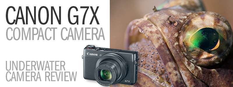Canon Powershot G7X Compact Camera Underwater Review