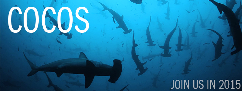 Cocos Island Photo & Video Expedition: July 22 - August 2, 2015