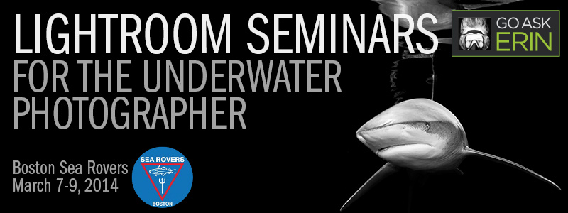 Lightroom Seminars for the Underwater Photographer - Boston Sea Rovers - March 7-9, 2014