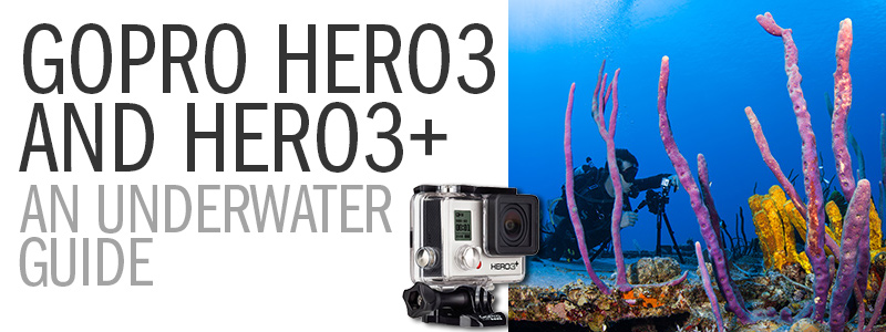 A Guide to Using the GoPro Hero3 / Hero3+ Underwater