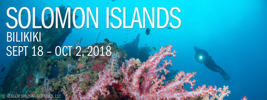 Solomon Islands – Bilikiki Sept 18 – Oct 2, 2018