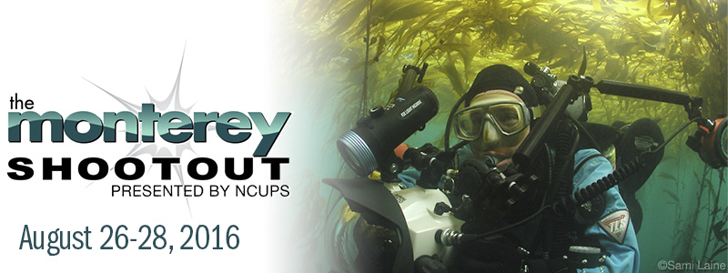 Join Us at the 2016 Monterey Shootout in Monterey, CA! - Aug. 26 - 28th, 2016