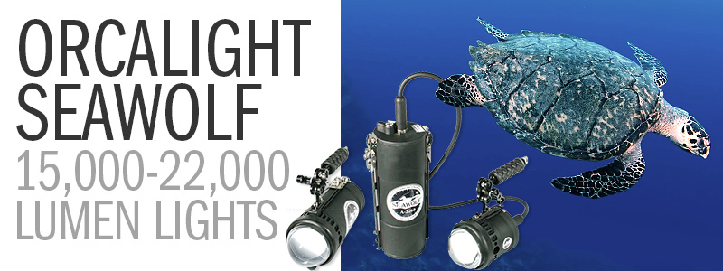 The Incredibly Bright Line of 15,000-22,000 Lumen Orcalight Seawolf Video Lights
