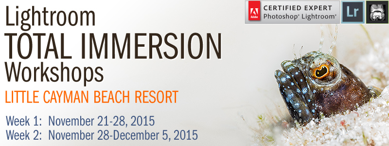 Lightroom Total Immersion Workshops: Little Cayman - November 21st-28th, 2015  &  November 28th-December 5th, 2015