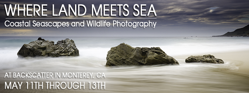 Where Land Meets Sea - Coastal Seascapes & Wildlife of Monterey Bay - May 11-13, 2012