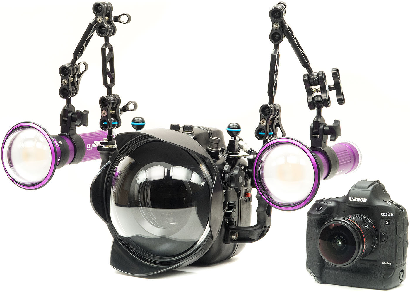 Canon 1DX II Underwater Wide Angle Camera Rig