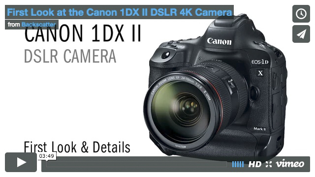 Canon 1DX MKII - TLDR Review