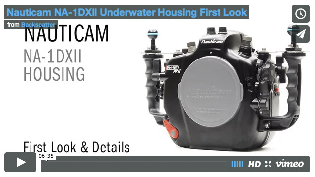 Nauticam NA-1DXII Underwater Housing Review
