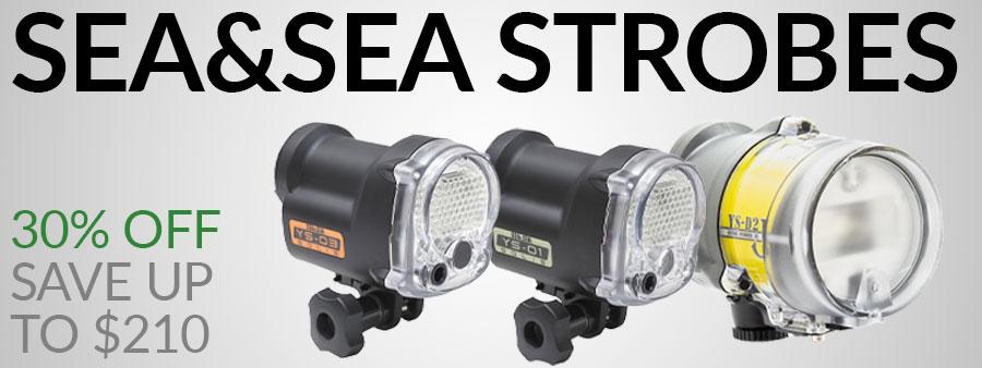 Sea & Sea Strobe Sale 2020