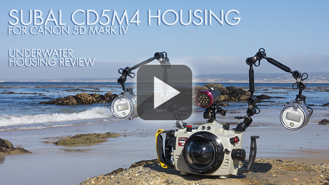 Subal Underwater Housing for Canon 5DX MKIV - TLDR Review