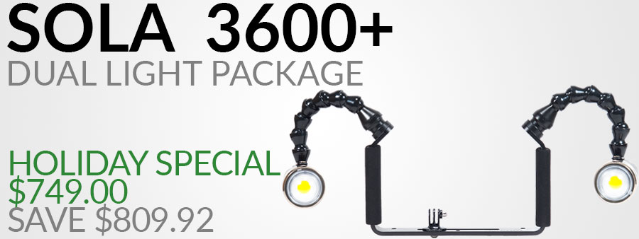 Light & Motion Sola 3800 Video Light with Dome Diffuser Dual Package