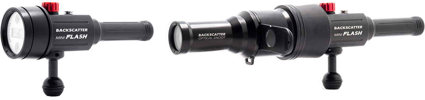 Backscatter Mini Flash Field Test—What is a Snoot and Why You Need One