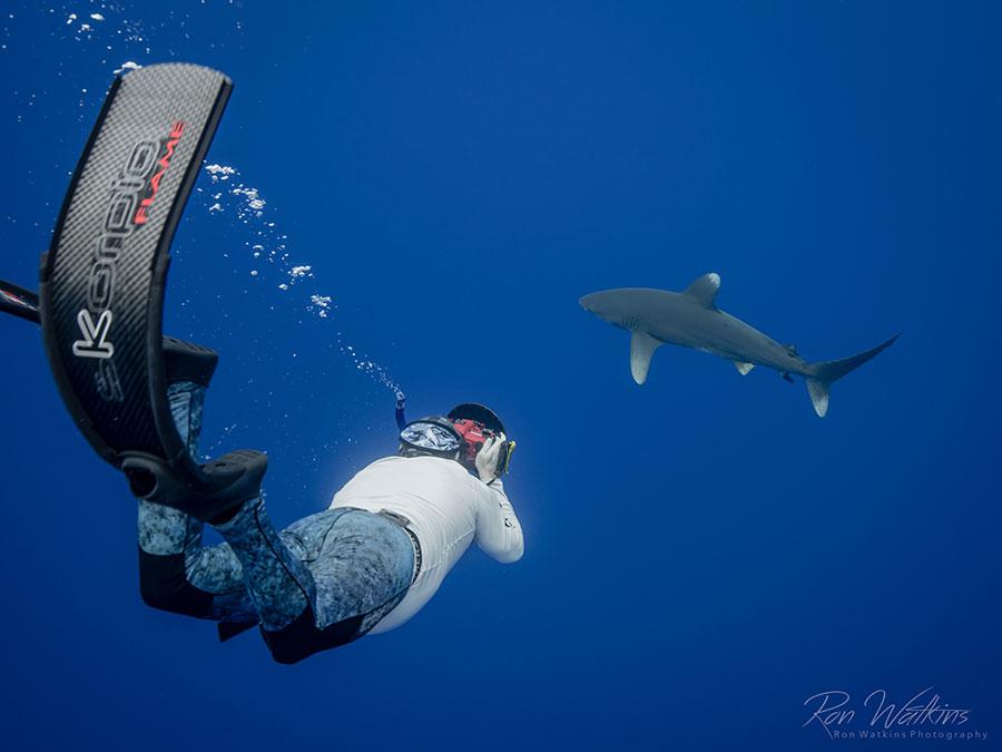 ©Ron Watkins - Moorea Tahiti Dive Photo Trip - Diver with Shark