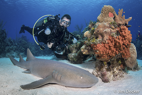 <a href='http://www.backscatter.com/sku/nkl-1559.lasso' class='standard'>Nikon D500</a> Underwater Camera Review