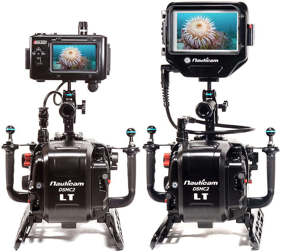 Backscatter Red Weapon 8K Underwater Camera & Nauticam Housing Review