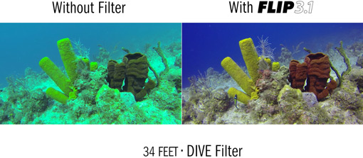 Comparison of frames taken without a filter and using the Backscatter <a href='http://www.backscatter.com/sku/bs-flip31-combo.lasso' class='standard'>Flip3.1</a> <a href='http://www.backscatter.com/sku/ff-dive.lasso' class='standard'>DIVE filter</a>