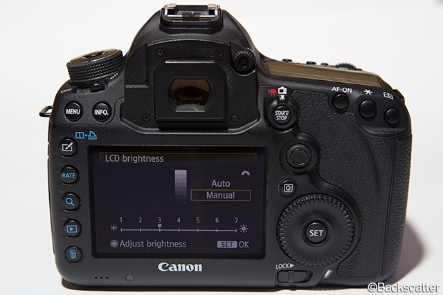 THE BEST DSLR CAMERA SETTINGS FOR UNDERWATER PHOTOS
