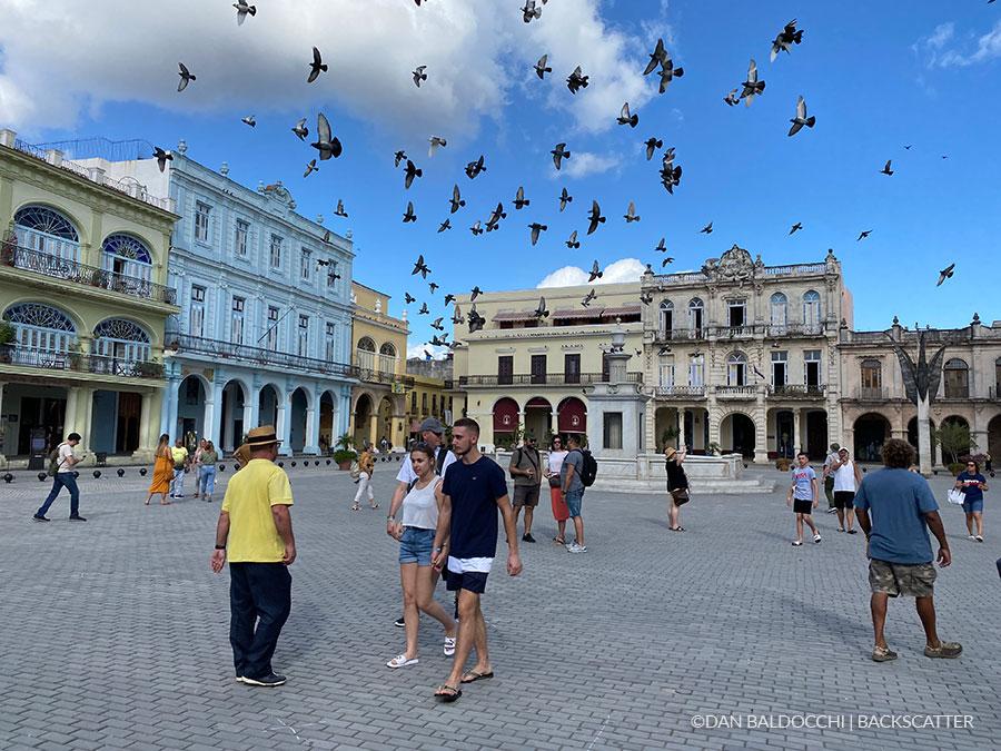 ©Dan Baldacchi - Garden Of The Queens, Cuba - City Square
