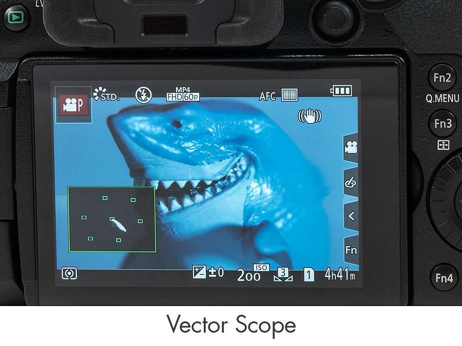 Panasonic GH5 Underwater Camera Review - Vector Scope Displays