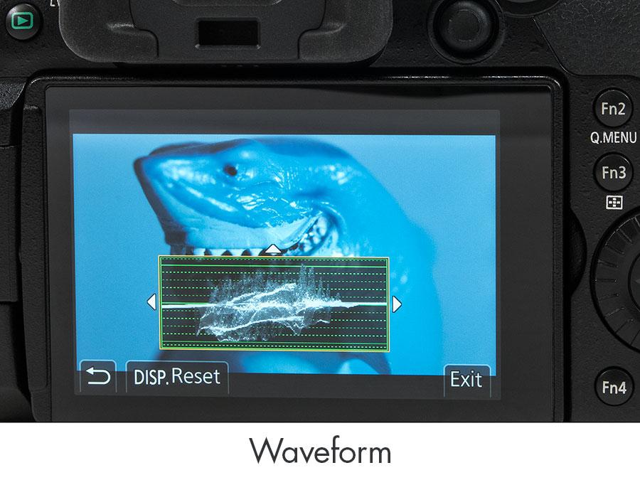 Panasonic GH5 Underwater Camera & Housing Review - Underwater