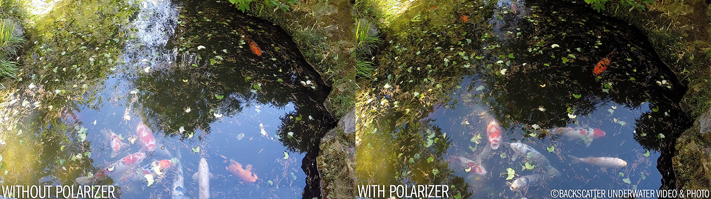 Flip5 GoPro Polarizer With and Without Pond