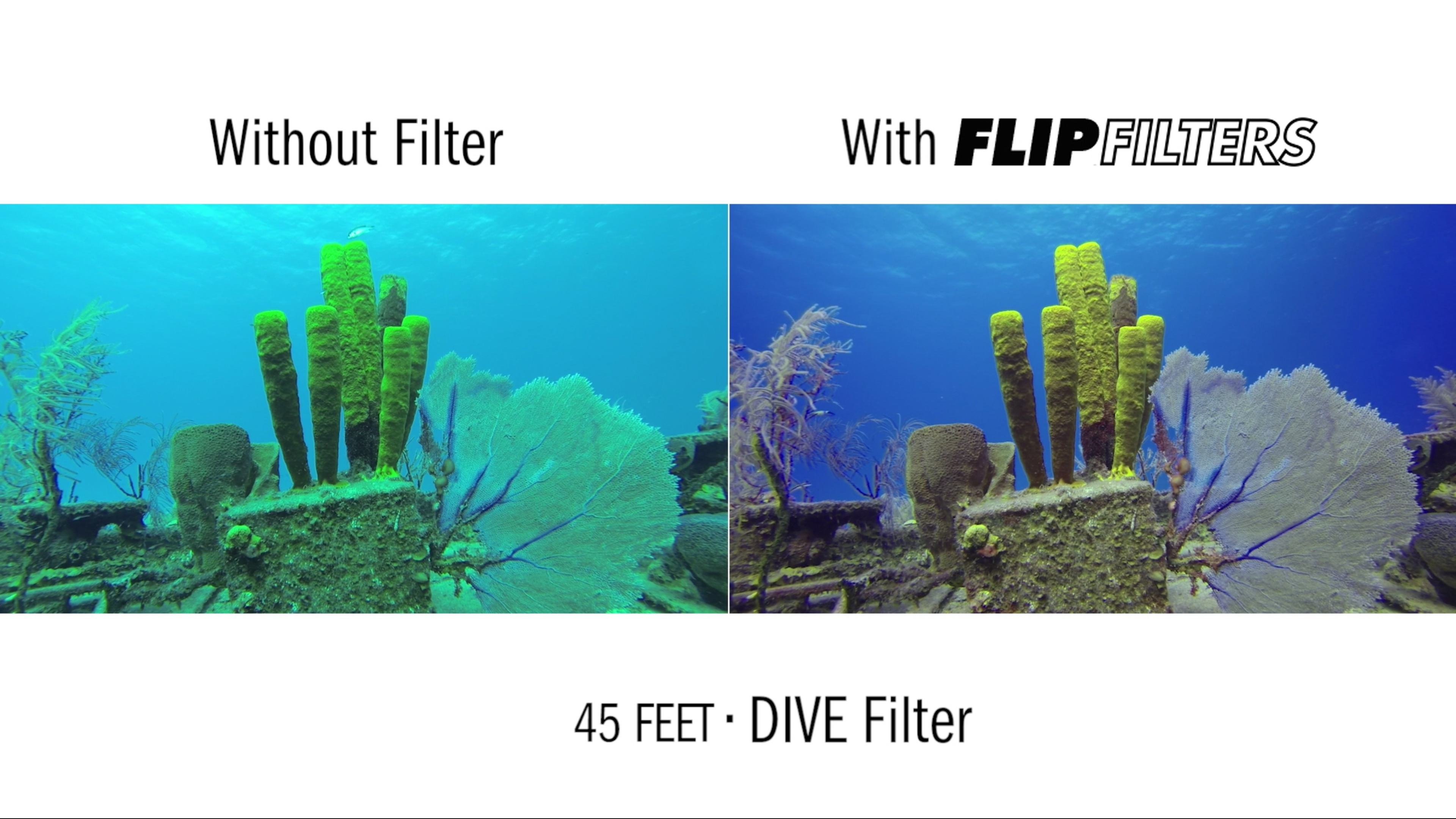 How To Filter Water Without A Filter Underwater Camera Articles Best Gopro Underwater Filter And Macro