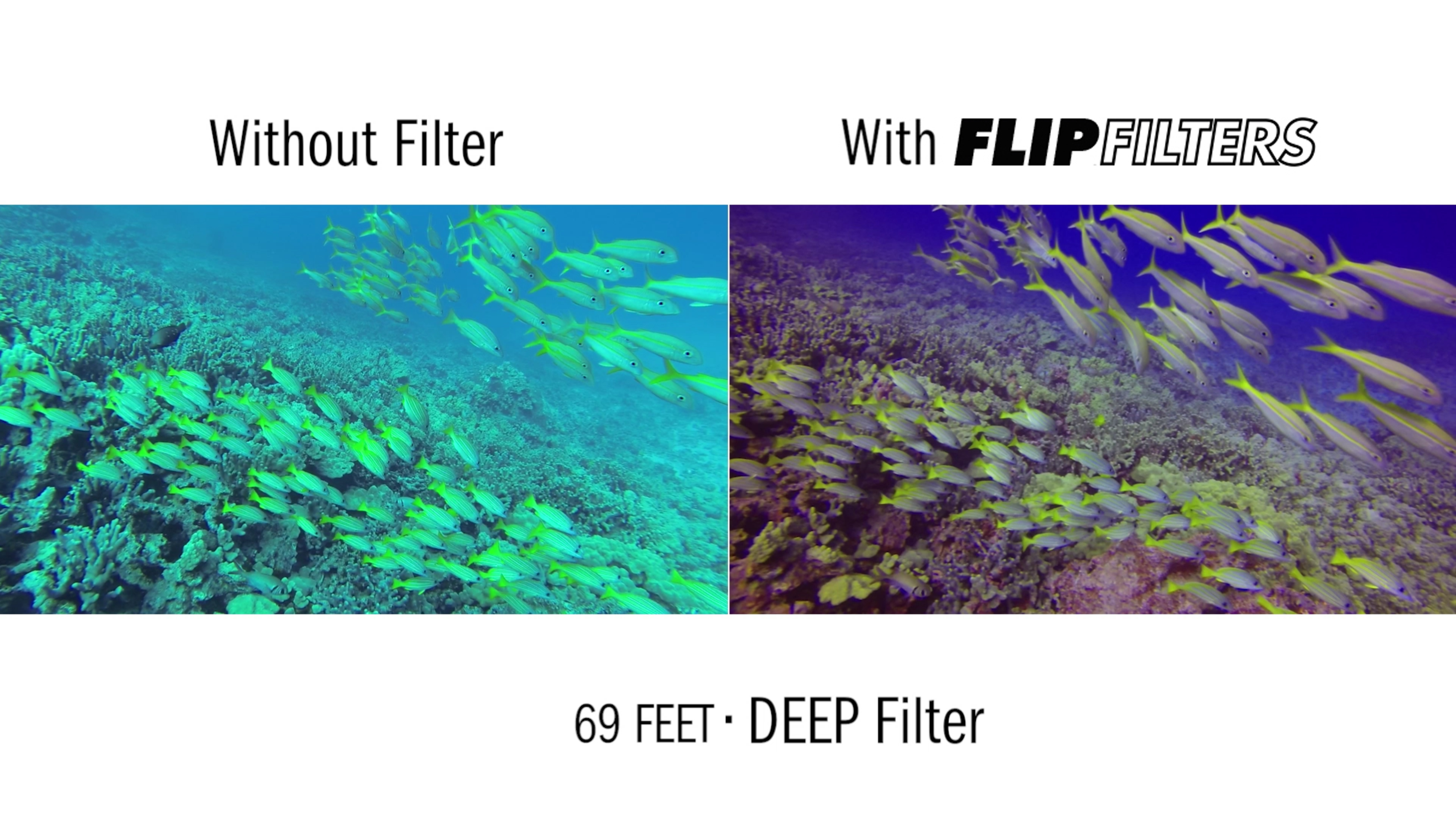 Comparison of frames taken without a filter and using the Backscatter FLIP4 <a href='http://www.backscatter.com/sku/ff-deep.lasso' class='standard'>DEEP filter</a>
