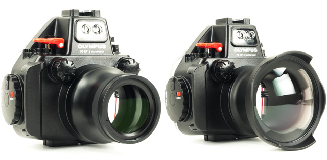 Olympus E-M5 Mark II Underwater Camera Review - Underwater