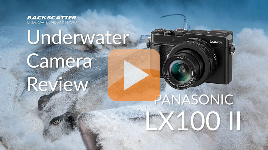 Panasonic LX100 II Underwater Camera Review on Vimeo