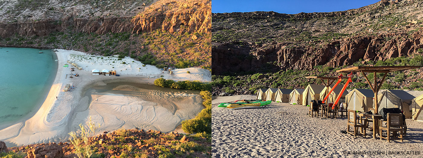 SEA OF CORTEZ FOR EPIC MARINE LIFE ENCOUNTERS - Camp Site