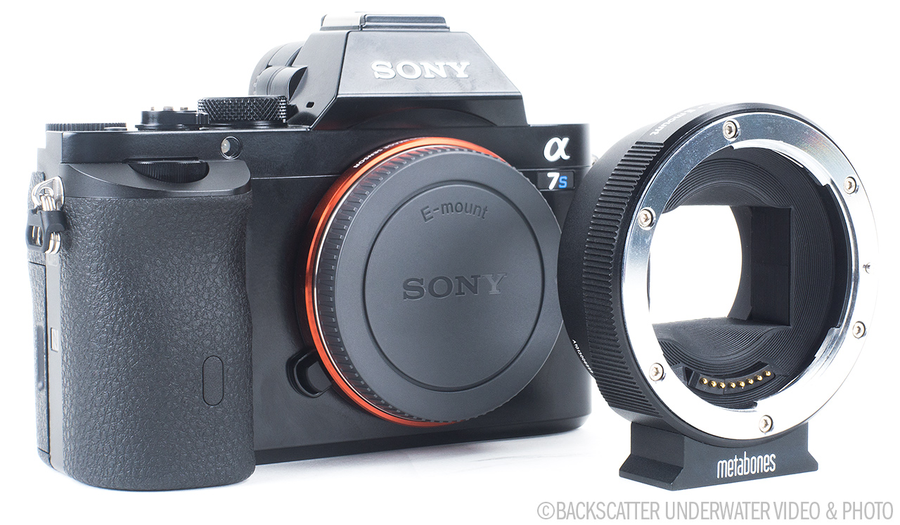 Sony A7 Underwater Camera Review - Three Camera Models, One